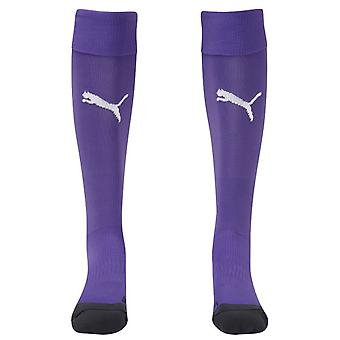 2014-15 equipo de puma calcetines (violeta)