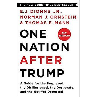 One Nation After Trump - A Guide for the Perplexed - the Disillusioned