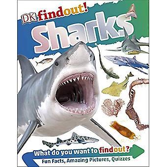 Requins (DK Findout!)