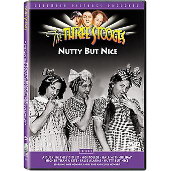 Three Stooges - Nutty But Nice [DVD] USA import