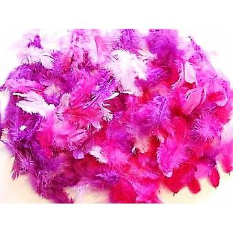 10g Mixed Purple Craft Feathers | Scrapbooking Card Making Embellishments