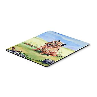 Carolines Treasures  7017MP Cairn Terrier and the chipmunk Mouse Pad, Hot Pad or