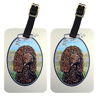 Carolines Treasures  7089BT Pair of 2 Irish Water Spaniel Luggage Tags
