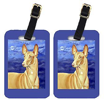 Carolines Treasures  7044BT Pair of 2 Pharaoh Hound Luggage Tags