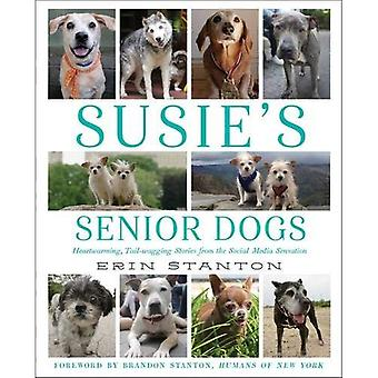 Chiens séniors de Susie