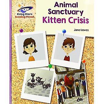 Reading Planet - Animal Sanctuary Kitten Crisis - Purple: Galaxy (Rising Stars Reading Planet)