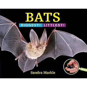 Bats - Biggest! Littlest! by Sandra Markle - 9781590789520 Book