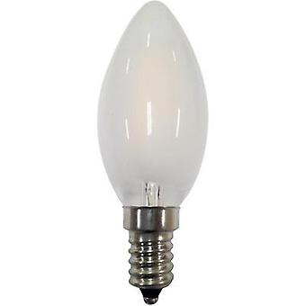 LED (monochrome) Segula 230 V E14 2 W = 25 W Warm white EEC: A++ Candle (Ø x L) 35 mm x 100 mm Filament 1 pc(s)