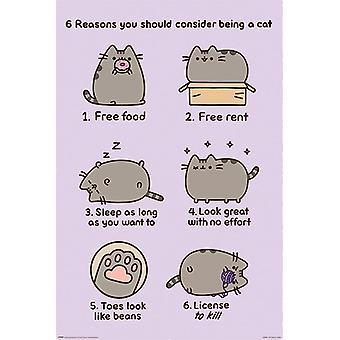 Pusheen (Reasons to be a Cat) poster