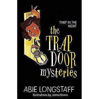 Trapdoor mysterier: Tjuv om natten: boka 3 (Trapdoor mysterier)