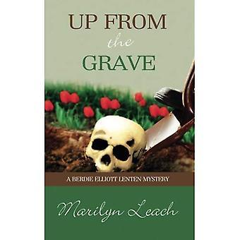 Vers le haut de la tombe (max Elliott Avent Mystery)