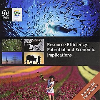 L'efficienza delle risorse: implicazioni potenziali ed economiche, sintesi per i decisori politici