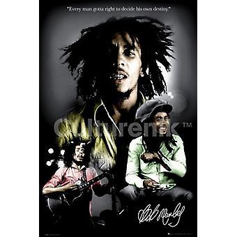 Bob Marley - destino cartel Poster Print