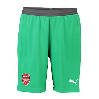 2018-2019 Arsenal Away Goalkeeper Shorts (Green)