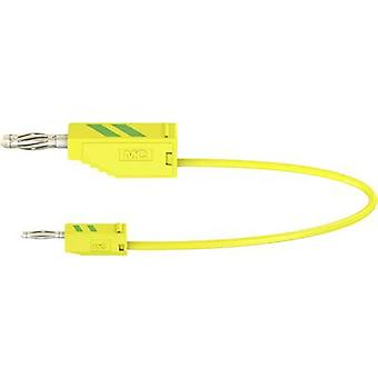 Stäubli AK205/410 Test lead [Banana jack 4 mm - Banana jack 2 mm] 0.3 m Green-yellow