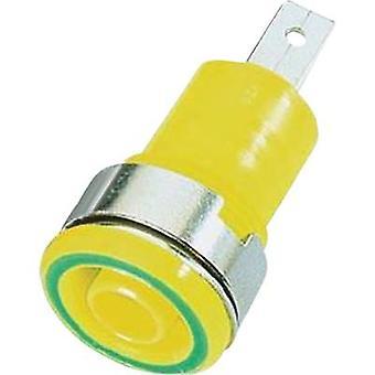 Stäubli SLB4-F/A säkerhet jack socket Socket, bygga-i gul-1 dator