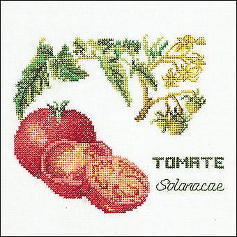 Tomato On Aida Counted Cross Stitch Kit-6.25