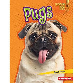 Pugs (Lightning Bolt Books (Tm) -- Who's a Good Dog?)