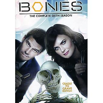 Bones - Bones Season 6 [DVD] USA import