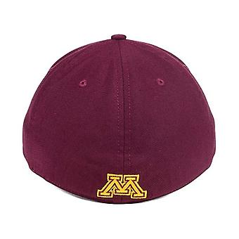 Minnesota Gophers locale NCAA Nike Dri-Fit Swoosh Flex componibile cappello