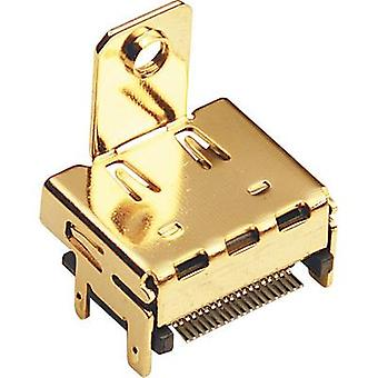 HDMI connector Socket, horizontal mount Number of pins: 19 Gold BKL Electronic 0907010 1 pc(s)