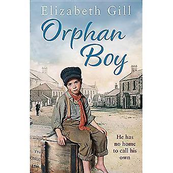 Orphan Boy (The Deerness Series)