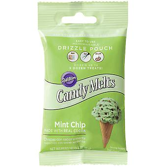 Drizzle Pouch 2oz-Mint Chocolate Chip W191194-60