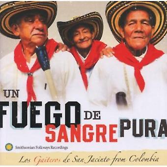 Los Gaiteros - Un Fuego De Sangre Pura: Importación de Estados Unidos de Los Gaiteros De San Jacin [CD]