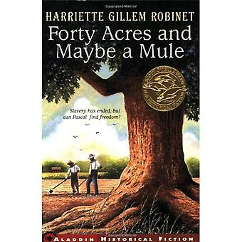 Forty Acres and Maybe a Mule (Jean Karl Books)