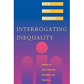 Interrogating Inequality