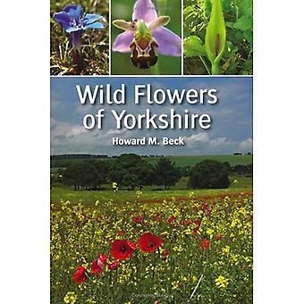 Dzikie kwiaty Yorkshire