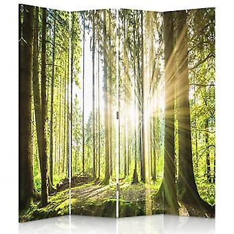 Room Divider, 4 Panels, Canvas, Sun In The Forest