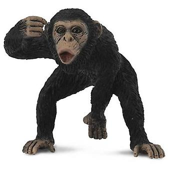 Collecta Male chimp -M- (Toys , Dolls And Accesories , Miniature Toys , Animals)
