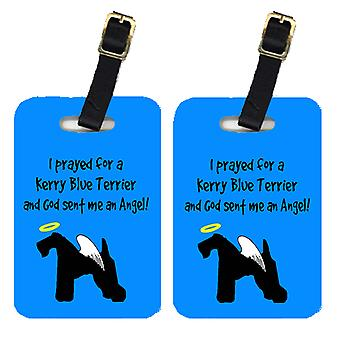 Carolines Treasures  AN1042BT Pair of 2 Kerry Blue Terrier Luggage Tags
