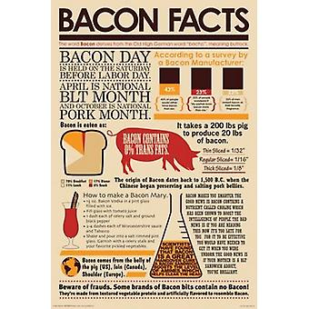 Bacon - Bacon Facts Poster Poster Print