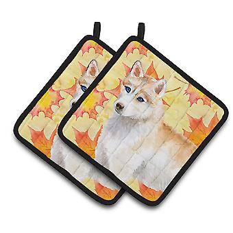 Carolines Treasures  BB9916PTHD Siberian Husky Fall Pair of Pot Holders