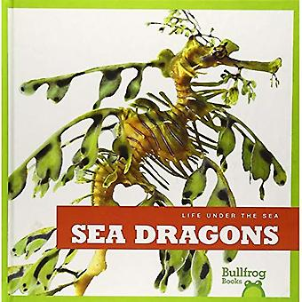 Sea Dragons (Life Under the Sea)