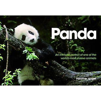 Panda - An Intimate Portrait of One of the World's Most Elusive Creatu