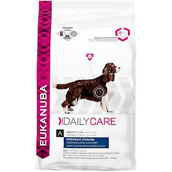 Eukanuba Daily Care Overweight Sterlized (Dogs , Dog Food , Dry Food)