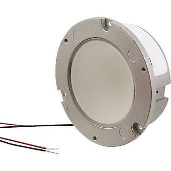 HighPower LED module Warm white 2000 lm 82 ° 23.8 V CREE