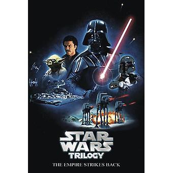 Star Wars Trilogy Poster The Empire Strikes Back DVD-Release Motiv