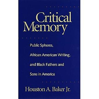 Mémoire critique: Sphères publiques, écriture afro-américaine et noirs pères et fils en Amérique (Géorgie du Sud...