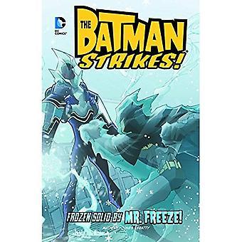 Von Mr. Freeze eingefroren! (Batman Streiks!)