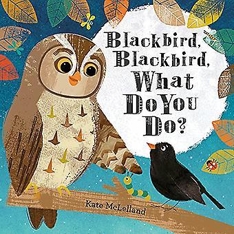 Koltrast, Blackbird, vad vill du göra?
