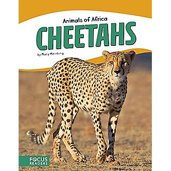 Cheetahs by Mary Meinking - 9781635172607 Book