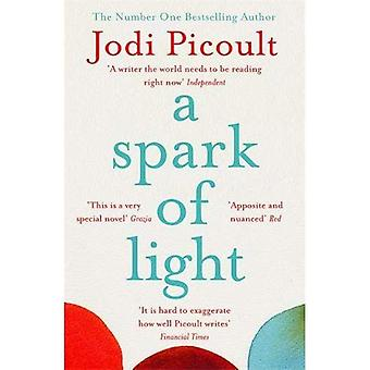 A Spark of Light: from the author everyone should be reading