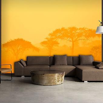 Wallpaper - Orange savanna