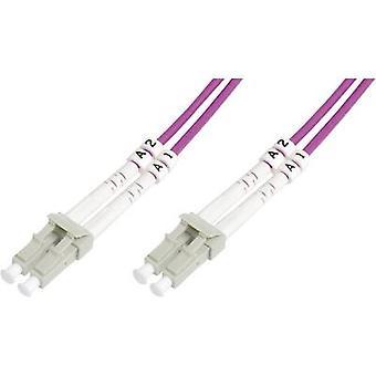 Fibra de vidrio Cable de FOC [1 x conector LC - 1 x conector LC] 50/125 μ