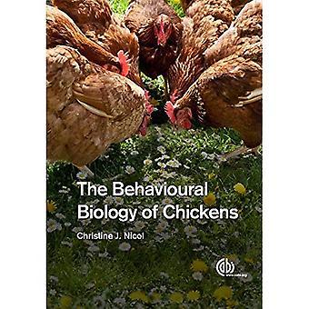 De gedragsbiologie van kippen