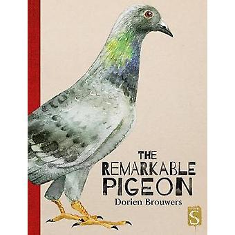 The Remarkable Pigeon by The Remarkable Pigeon - 9781912537259 Book